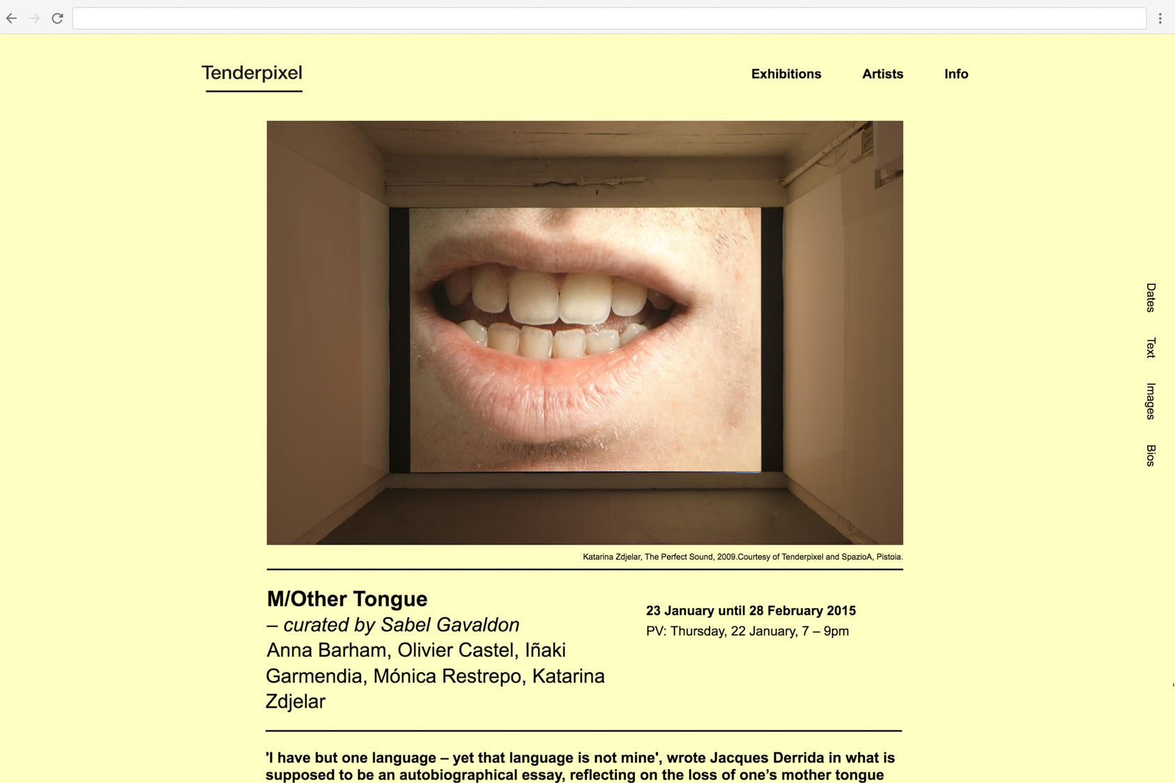 Tenderpixel Website by the agency for emerging ideas