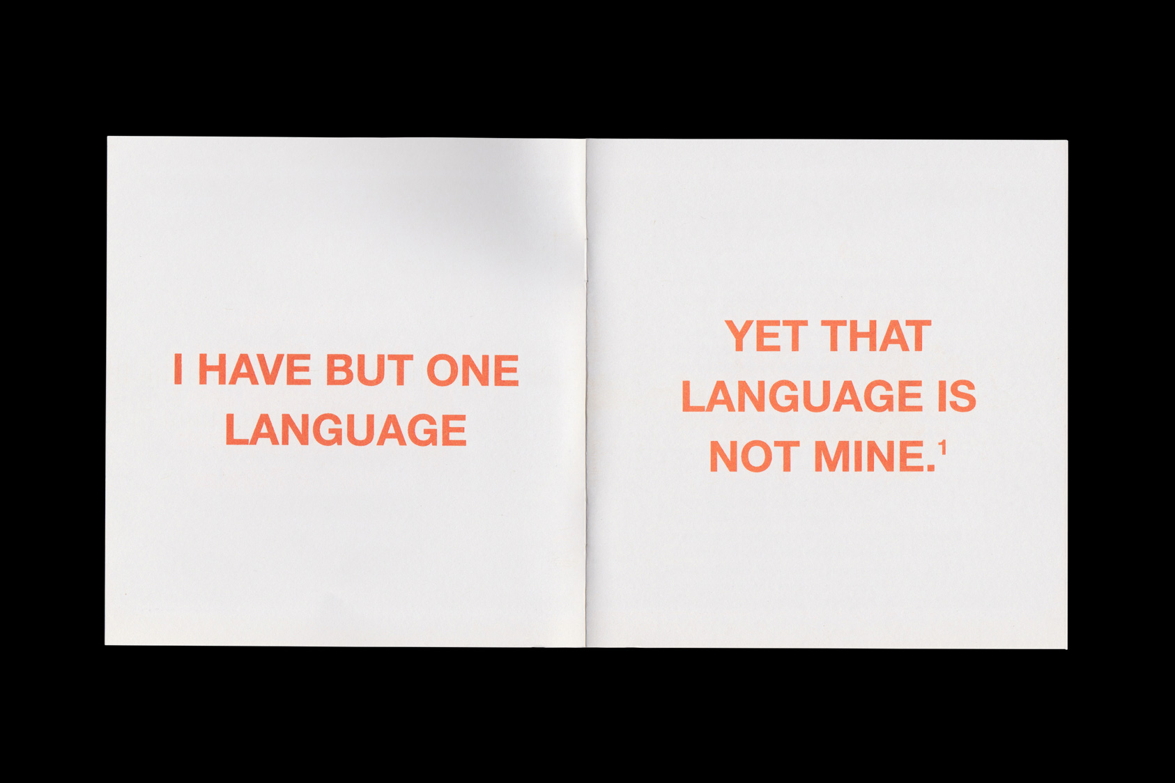 M/Other Tongue - publication accompanying exhibition for Tenderpixel and Sabel Gavaldon, 2016 by the agency for emerging ideas